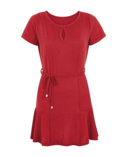 Pussycat Burgundy Panel Skater Dress | New Look