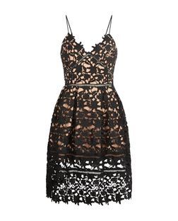 Cameo Rose Black Lace Skater Dress | New Look