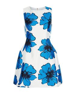Cameo Rose Blue Floral Print Skater Dress | New Look